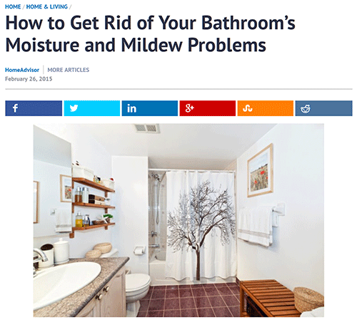 Click the image to access the original article on getting rid of mold and mildew in the bathroom.