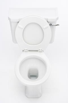 Toilet repair specialists in Olympia